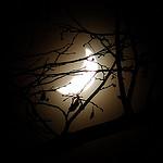 150203-iPhone-Sleepmode-TOP