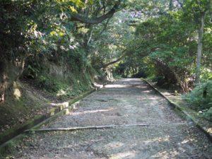 191104-Kagoshima-6
